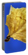 Hand Holding Dry Cottonwood Leaf Portable Battery Charger