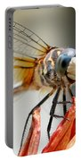 Happy Dragonfly Portable Battery Charger