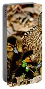 Happy Family Portable Battery Charger by Frozen in Time Fine Art Photography
