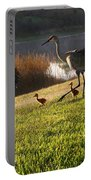 Happy Sandhill Crane Family - Original Portable Battery Charger