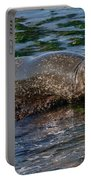 Harbor Seal At Low Tide Portable Battery Charger