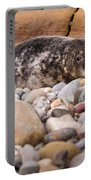 Harbour Seal   Portable Battery Charger