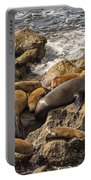 Harem Of Seals Portable Battery Charger