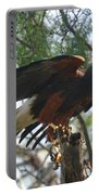 Harris Hawk Portable Battery Charger