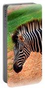 Hartman Zebra Portable Battery Charger