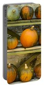 Harvest Display Portable Battery Charger
