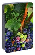 Harvest Time 1 Portable Battery Charger
