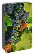 Harvest Time 2 Portable Battery Charger