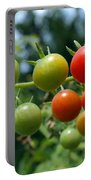 Harvest Tomatoes Portable Battery Charger