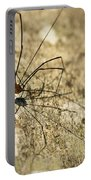 Harvestman Spider Portable Battery Charger