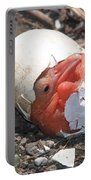 Hatching Pelican Portable Battery Charger