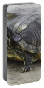 Hatteras Turtle 2 Portable Battery Charger