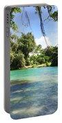 Hawaiian Landscape 4 Portable Battery Charger