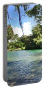 Hawaiian Landscape Portable Battery Charger