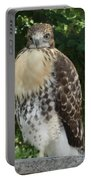 Hawk 2 Portable Battery Charger