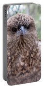 Brown Hawk Face Profile Portable Battery Charger