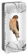 Hawk Framed In Branch Outline Portable Battery Charger