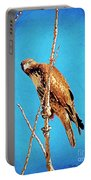Hawk In A Glow Portable Battery Charger