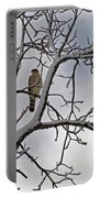 Hawk In Winter Portable Battery Charger