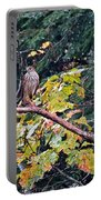 Hawk On A Limb Portable Battery Charger