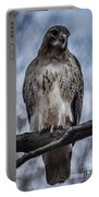 Hawk Red Tailed Portable Battery Charger