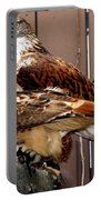 Hawks Portable Battery Charger