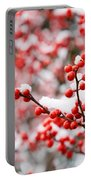 Hawthorn Berries Portable Battery Charger