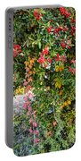 Hawthorn Berry Portable Battery Charger