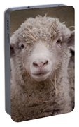 Hay Ewe Portable Battery Charger