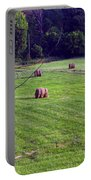 Hay Field Portable Battery Charger