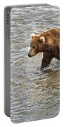 Head Grizzly Bear With Intense Fishing  Focus For Salmon In Moraine River In Katmai Np-ak Portable Battery Charger
