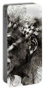 Head Of A Satyr  Portable Battery Charger