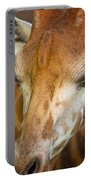 Head Of Giraffe Portable Battery Charger