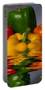 Healthy Reflections Portable Battery Charger by Shane Bechler