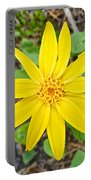 Heartleaf Arnica In Lake Louise Rv Park In Banff National Park-alberta Portable Battery Charger