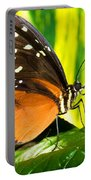 Hecale Longwing Butterfly Portable Battery Charger