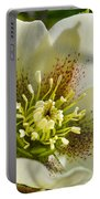 Helleborus Bright Portable Battery Charger
