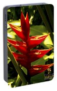 Heliconia II Portable Battery Charger