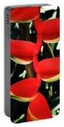 Heliconia Rostrata Portable Battery Charger
