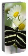 Heliconius Charithonia Portable Battery Charger