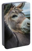Hello Donkey Portable Battery Charger