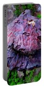 Hemlock Reishi Portable Battery Charger