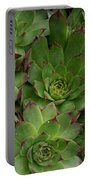 Hen And Chicks Portable Battery Charger
