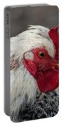 Hen Portable Battery Charger