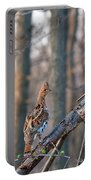 Hen Ruffed Grouse On Roost Portable Battery Charger