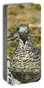 Partridge 3 Portable Battery Charger