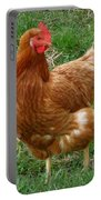 Henny Penny Portable Battery Charger