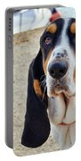 Henry The Basset Portable Battery Charger