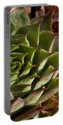 Hens And Chicks Sedum 1 Portable Battery Charger