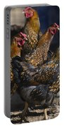 Hens Of Distinction Portable Battery Charger